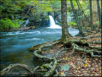 Delaware Water Gap Photo Workshops by Salvatore Vasapolli
